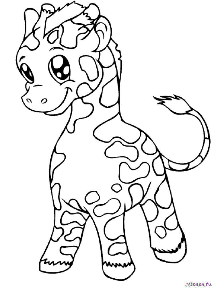 Раскраска жираф 5