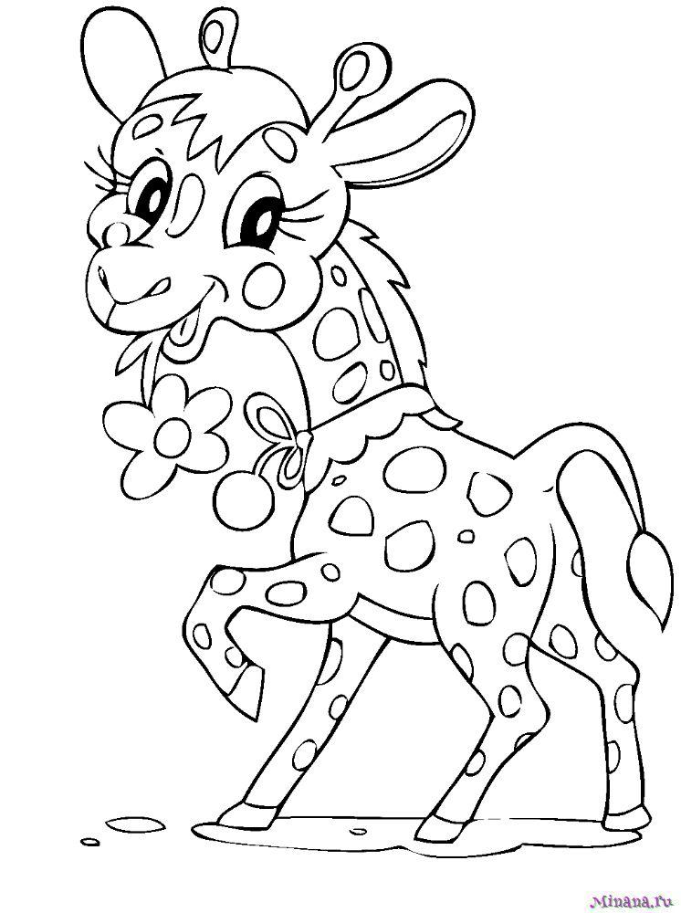 Раскраска жираф 6