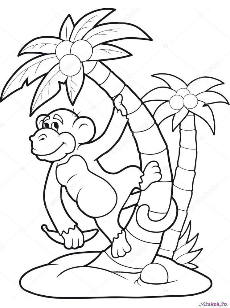 Раскраска обезьяна на пальме