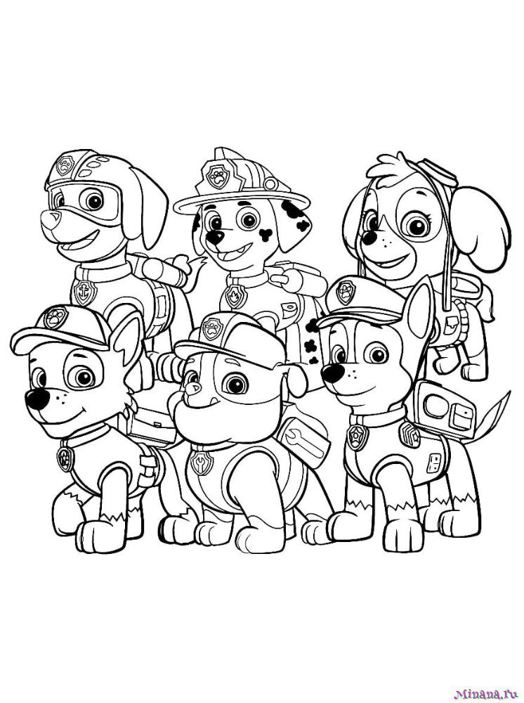 Раскраска щенячий патруль 5