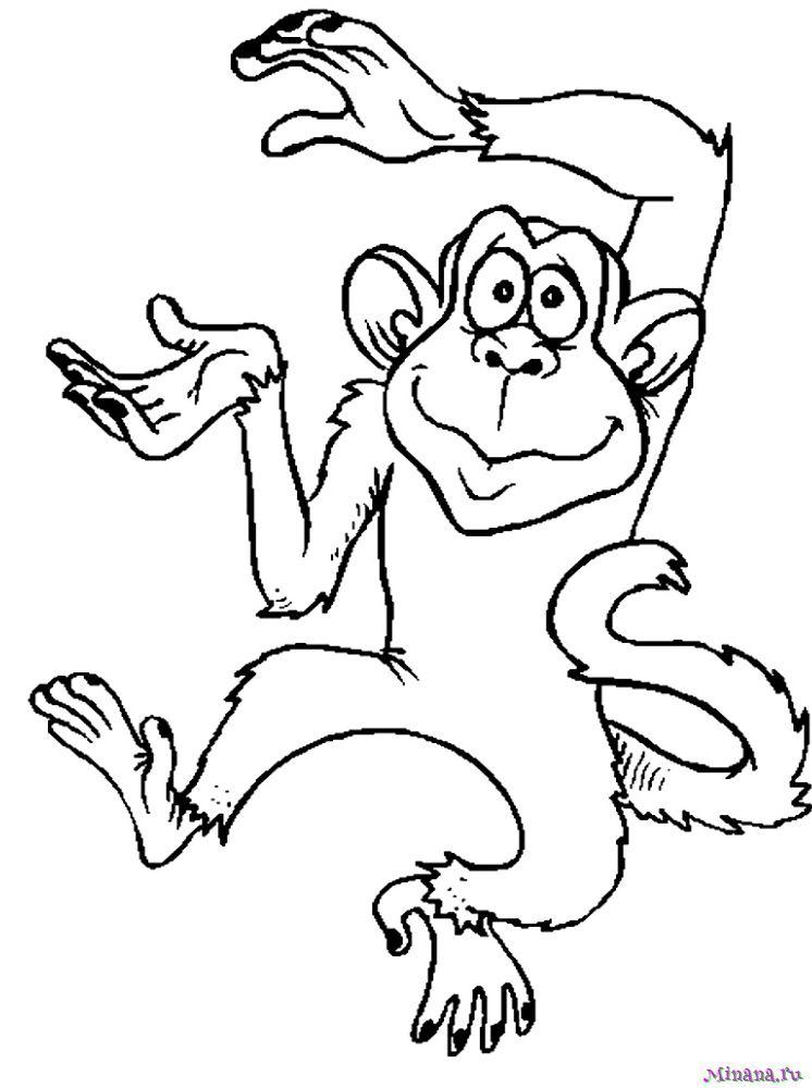 Раскраска a monkey