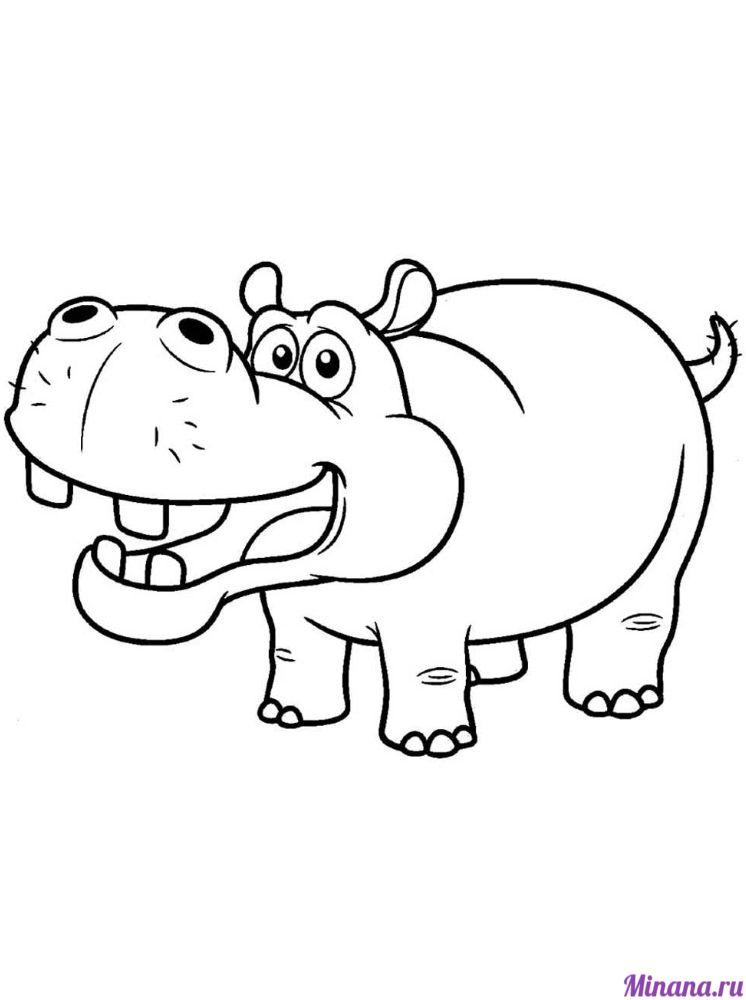 Раскраска бегемот