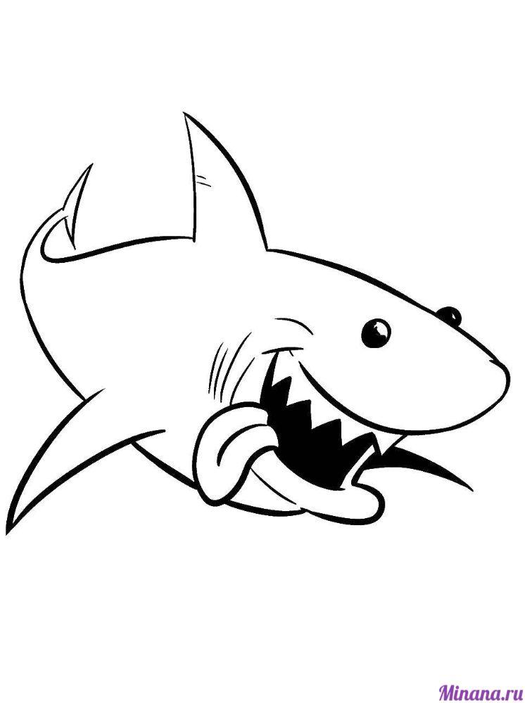 Раскраска большая акула