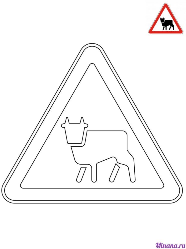 Раскраска дорожный знак перегон скота