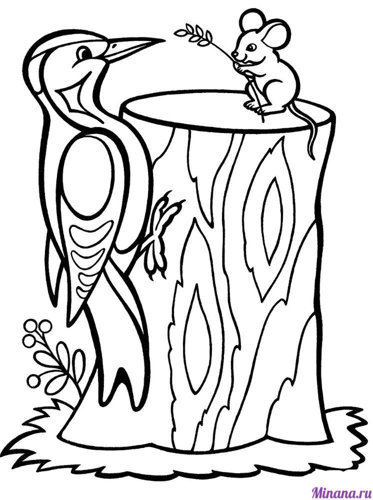 Раскраска дятел с мышкой