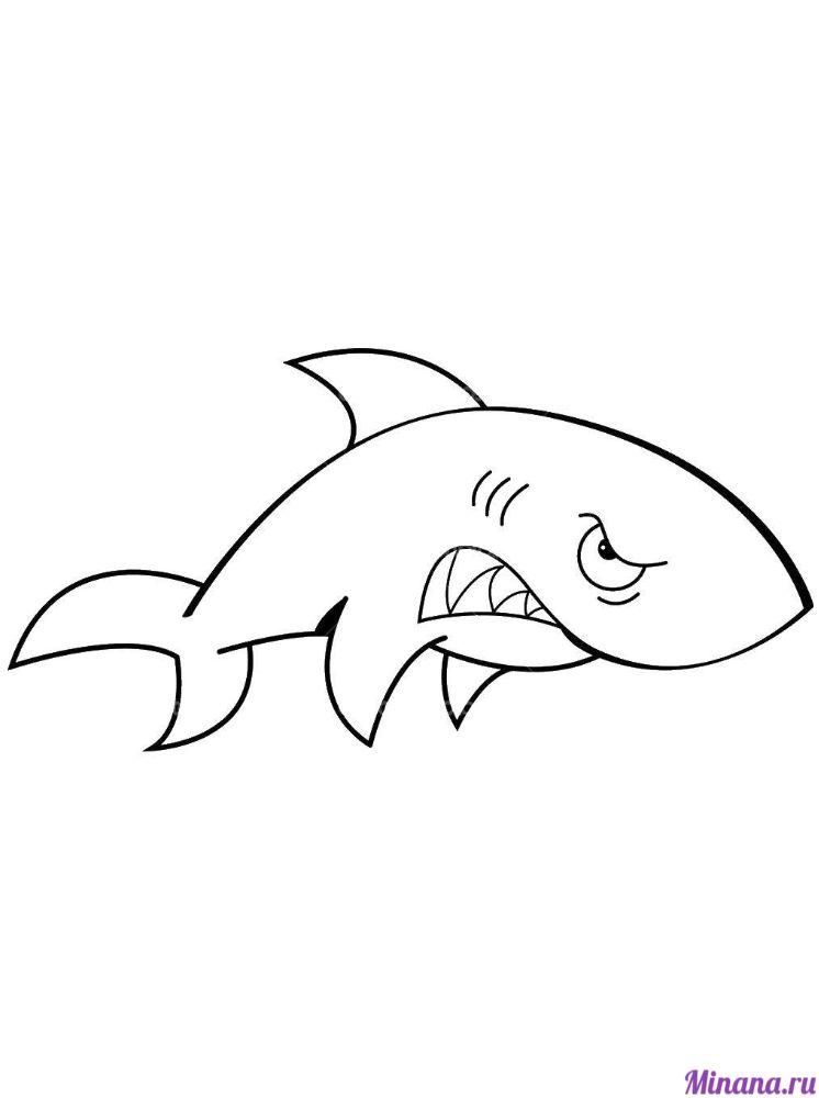 Раскраска злая акула
