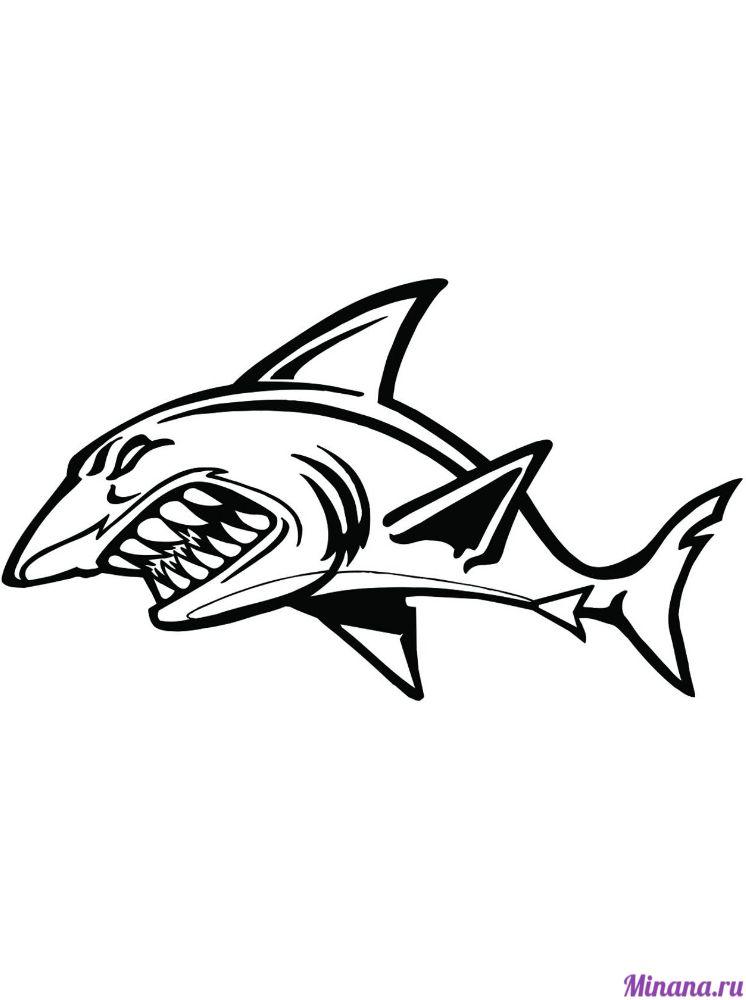 Раскраска страшная акула